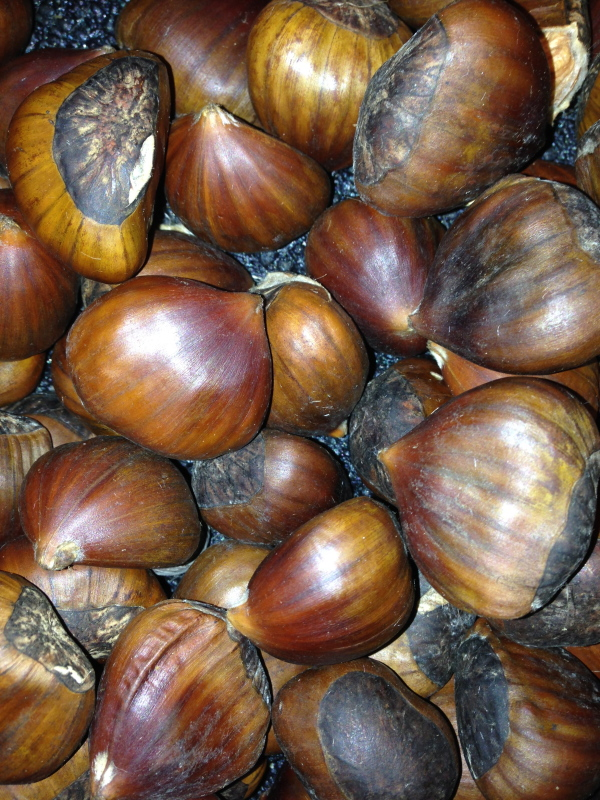 Chestnuts for sale in an American grocery store will make great creamy chestnut soup.